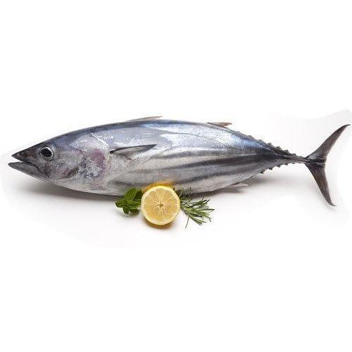 Tuna Fish Curry Cut